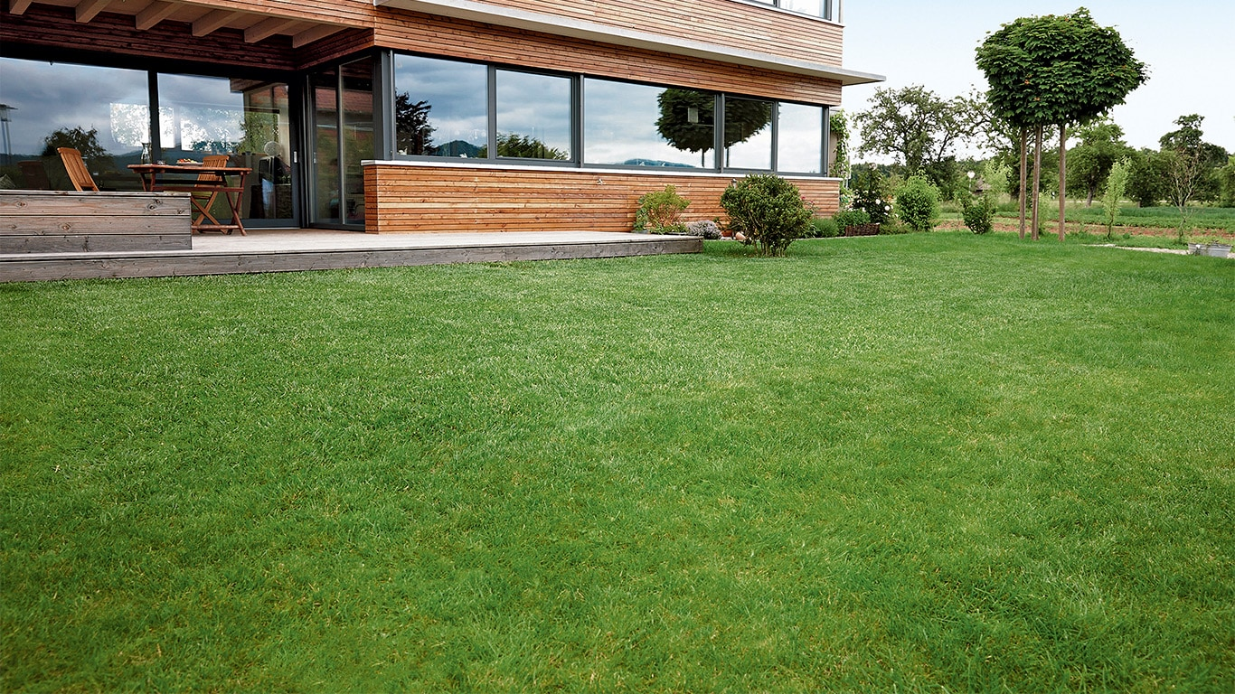 After the scarifying the lawn should be protected for a few days. The turf then has the optimal conditions to regenerate after the stresses of the scarifying.