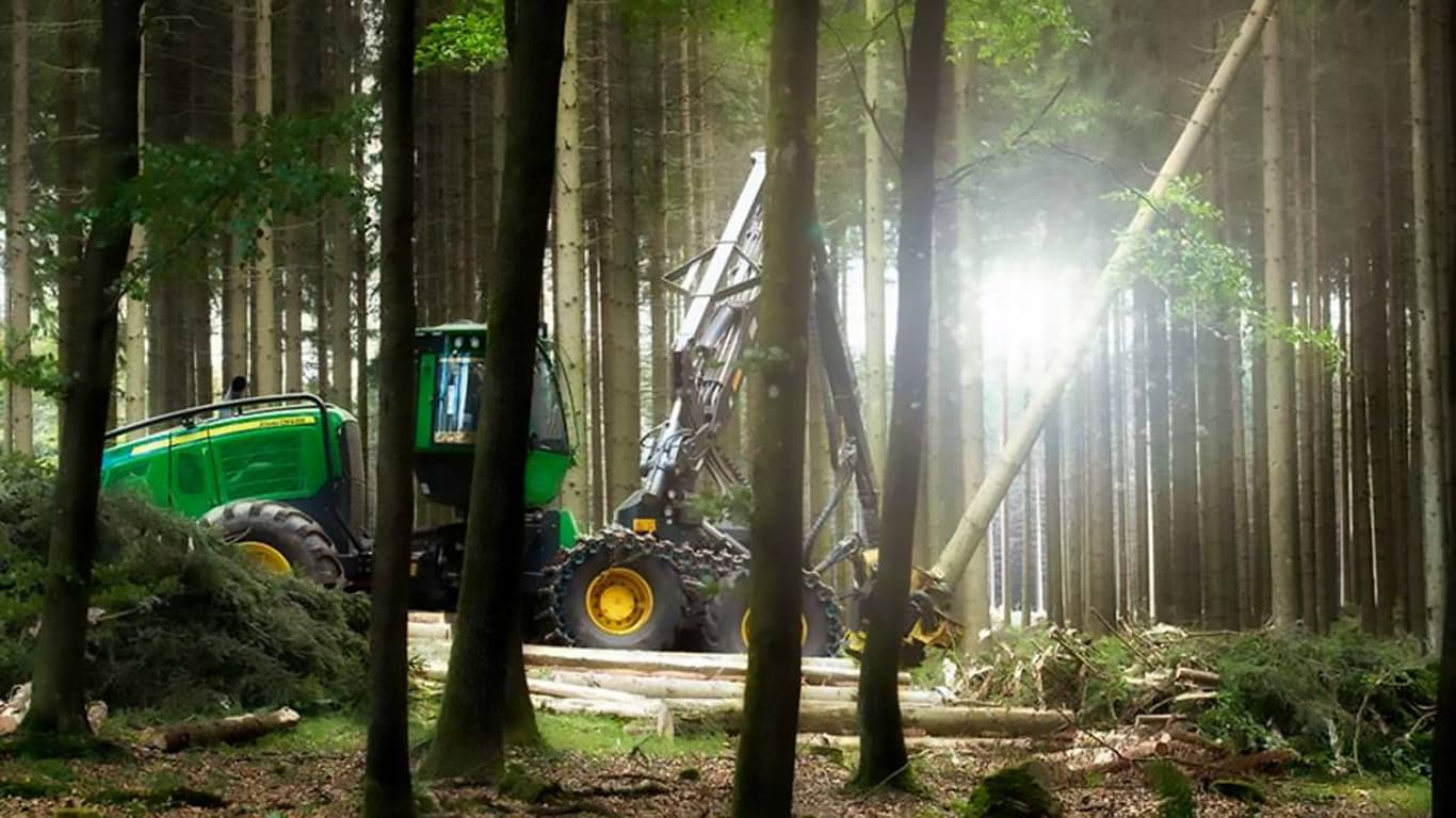 Machine working in the forest.